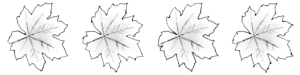 A leaf texture with four hand-drawn variations of the same image.